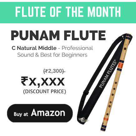 Best Flute in India For Beginners